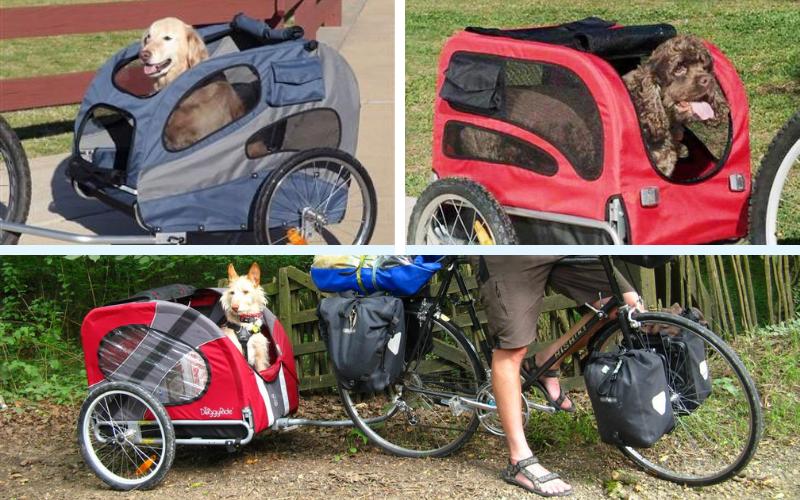 remolque para bici perro